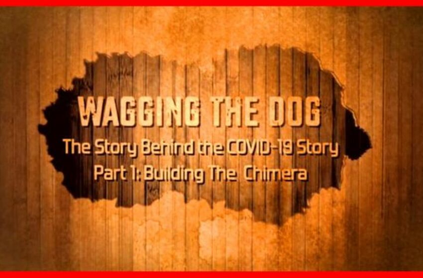 Wagging the Dog : The Story Behind the Story of COVID19 –  Part 1: Creating The Chimera