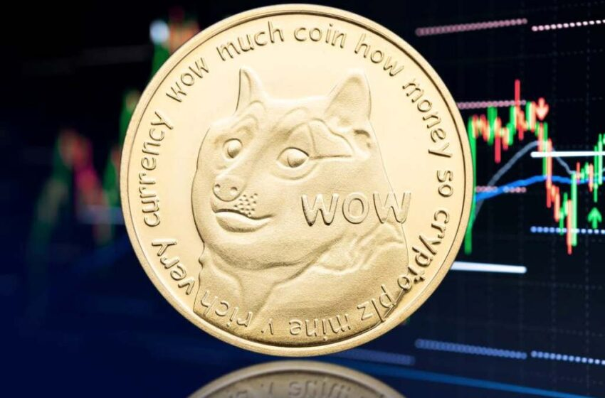 Dogecoin Price Jumps After Elon Musk Says 'Release the Doge!'