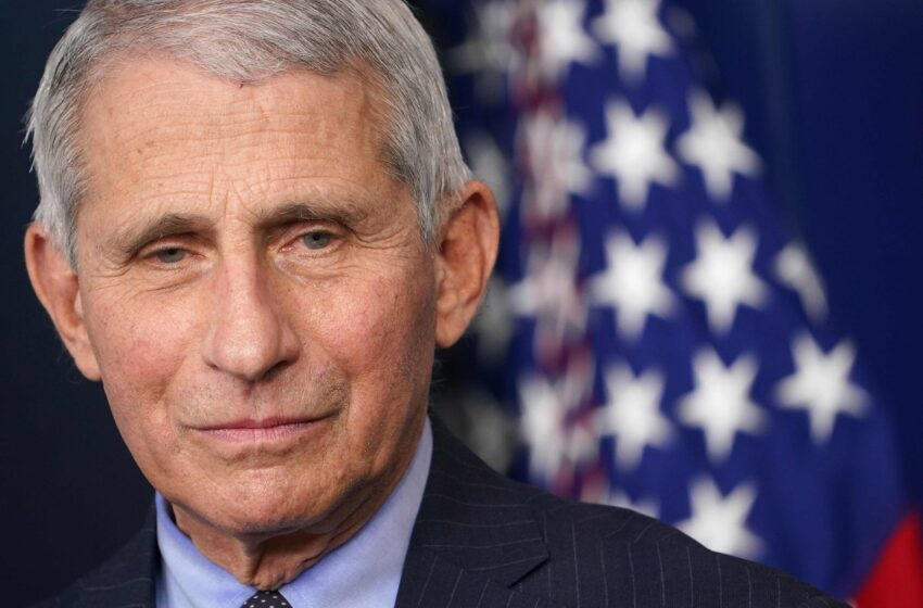 The Aids Pandemic Aka Fauci's First Fraud