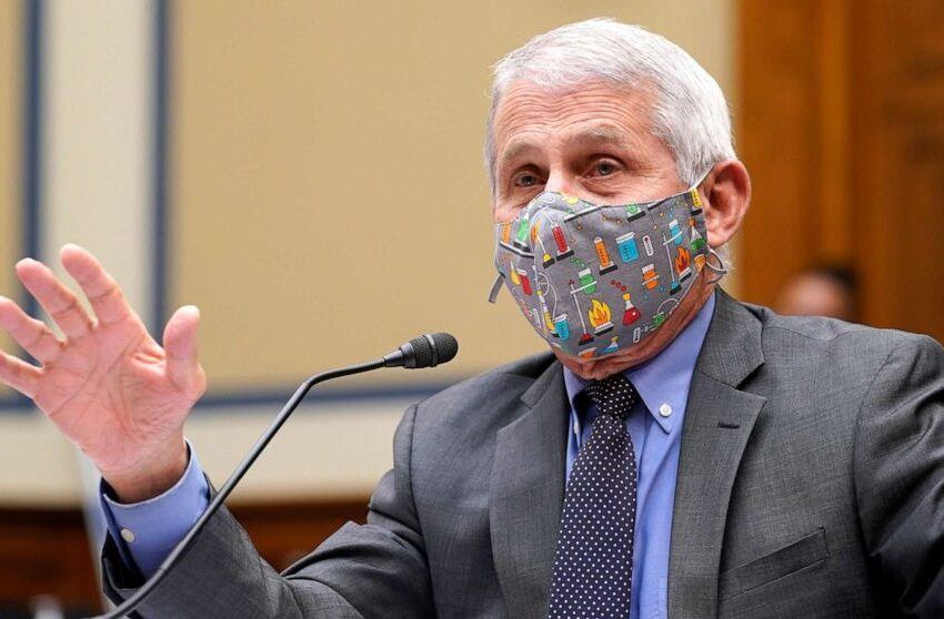 14 Us Congressmen Are Going After Fauci for the Suppression of Ivermectin & Hydroxychloroquine – The Greatest Crime in US History